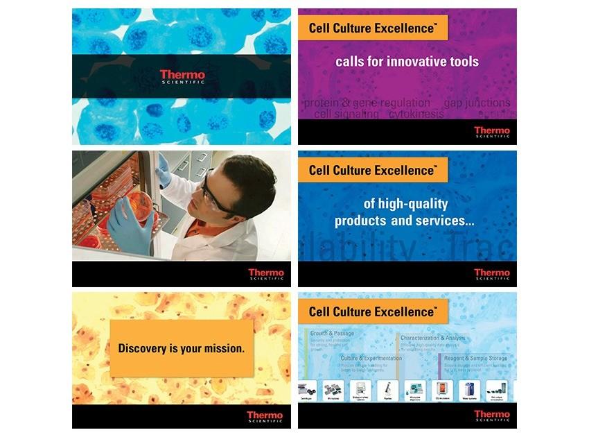 Still frames from interactive presentation